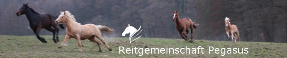 Reitgemeinschaft Pegasus Fürstenhausen e.V.